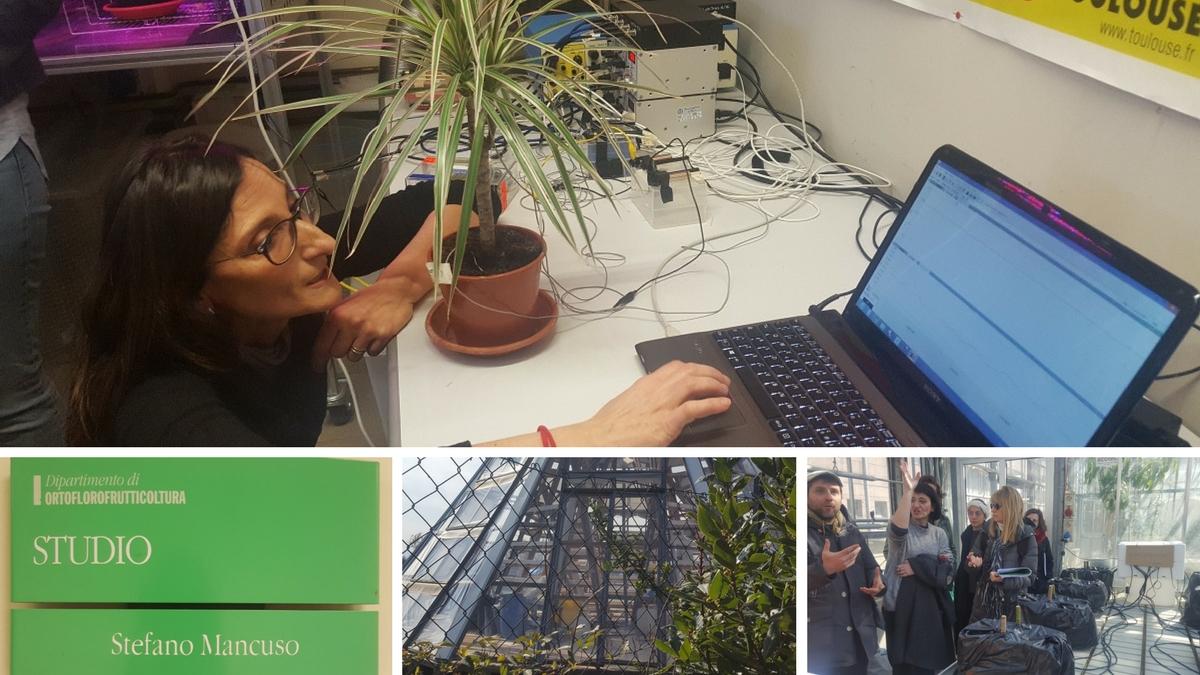 LINV - International Laboratory of Plant Neurobiology